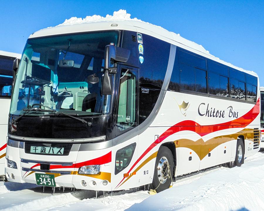 """Ski bus """"WHITE LINER"""""""